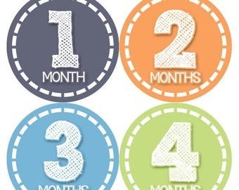 Monthly Baby Milestone Stickers Baby Boy Baby Shower Gift One-Piece Baby Stickers Monthly Baby Stickers Baby Month Sticker 369