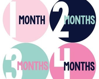 Monthly Baby Stickers Baby Month Stickers Baby Girl Month Stickers Monthly Photo Stickers Monthly Milestone Stickers 301