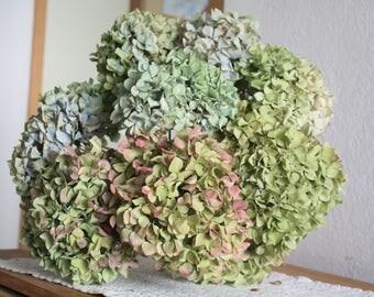 9-Dried-Hydrangea-flowers-DIY-craft-bouquet, hortensia séché, christmas decoration, centerpiece, wedding bouquet, centerpiece