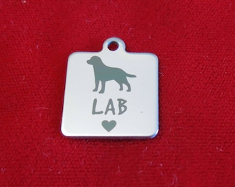 """1pc """"Lab"""" charms in stainless steel (BC1364)"""