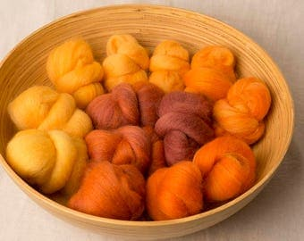Fall Inspired Gradient set, perfect for spinning or felting (170225)