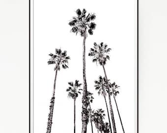 Palm Trees Wall Decor Print Poster Tropical Beach Marine Art Landscape Black White Nature Sea Minimalist Banana Leaf Photography Sky 1027