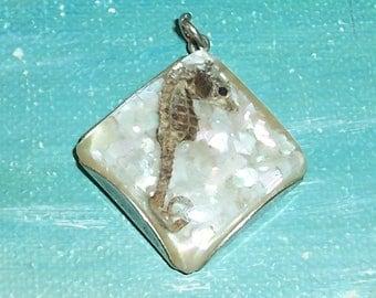 VINTAGE Real Preserved Miniature, Pygmy SEAHORSE Pendant