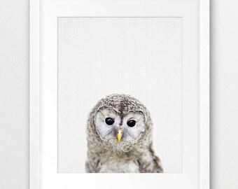 Owl Print, Woodland Decor, Baby Owl Print, Woodlands Animal Print, Nursery Wall Art, Owl Photography, Kids Room Decor, Digital Printable Art