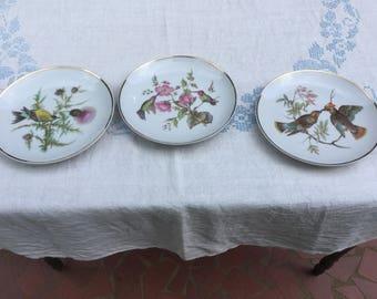Set of three Royal Halsey bird plates