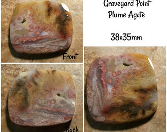 Graveyard Point Plume Agate- 38x35mm
