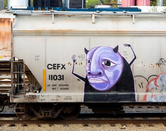 Purple Guy: Train are, graffiti. Frame not included. Individually photographed and printed by Frank Heflin