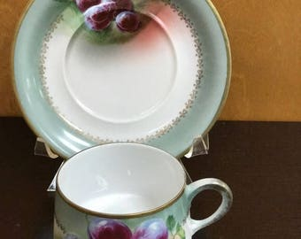Hand Painted German Hutschenreuther Porcelain Cup and Saucer