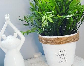 Succulent pun pot. Ima succa pot. Plant puns. Plant pun pot. Indoor plant pot. Funny plant pots. Punny pots. Punny plant pot. Painted pot.