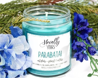 Parabatai | 9oz jar | Lady Midnight inspired soy candle | Book Candle | Bookish Gift