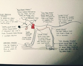 Anatomy of a Standing hound - Available as A4 print or A5/A6 card