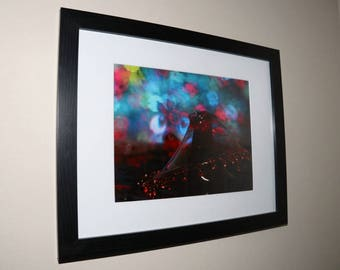 Willow from Mark Lenn Johnson's Fountainfalls Series Matted, Framed and Signed Creative Photograph Art