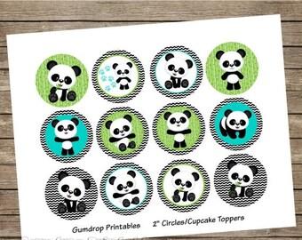 Panda Bear Stickers Etsy