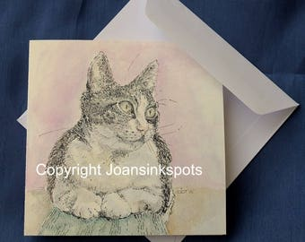 Card Lily the cat
