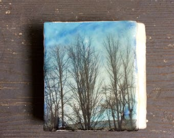 Small Encaustic Painting - Trees -  Image Transfer Painting -  Original Photo - Recycled Wood - Landscape - Mixed Media -
