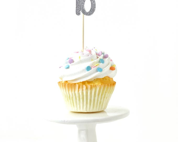 Number 18 Silver Glitter Cupcake Toppers, Number 18 Toothpicks, Silver Party Decor, Food Decoration, Eighteenth, 18th Birthday Eighteen