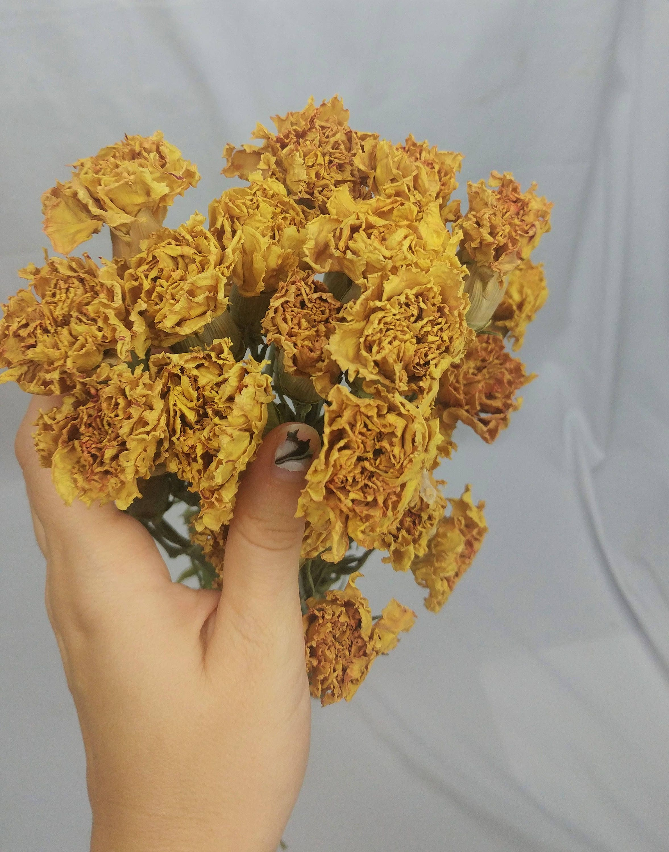 Craft flowers in bulk - Sold By Uniqueflowerchic