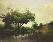 Landscape - photography, nannen arboretum, Ellicottville, New York, Japanese gardens, red bridge, trees, simple, aged, water