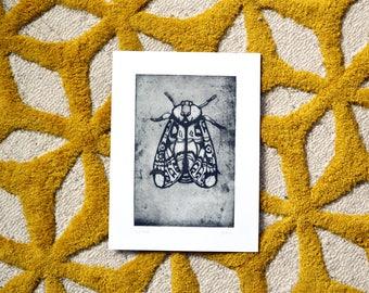 The Moth | Original Etching Drawing | Black Print