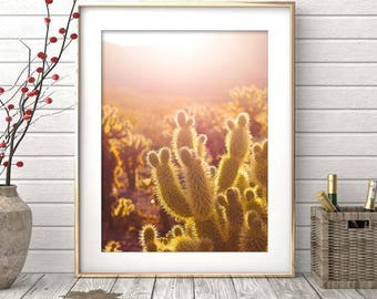 Cactus Wall Art, Cactus Print, Cactus Photography, Digital Print, Cactus Art, Printable Art, Desert Cactus Photo, Cactus South Western Decor