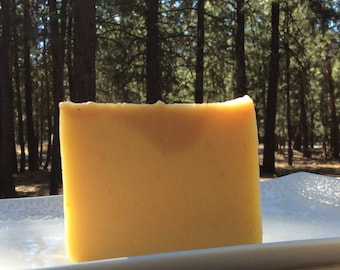 Pumpkin Vegan Soap, Unscented, All Natural Soap, Sensitive Skin Soap