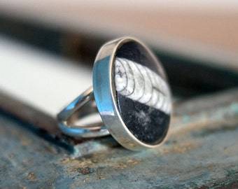 Orthoceras ring, fossil ring, round fossil ring, unusual ring, unique jewellery, UK size P ring, US size 7.45 ring, No. 16 size ring