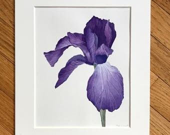 Iris watercolor, original painting, purple flower, watercolor painting, small artwork, iris flower art, original watercolor, iris painting