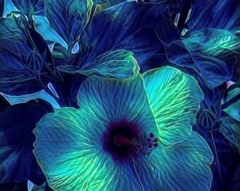 Blue Hibiscus- Digitally Enhanced 8x10 Photo Print