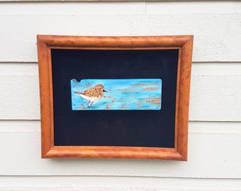 Little Seabird pyrography art wall hanging (art only), wood burned and watercolor image, Pine slice, Sandpiper in the ocean with grasses