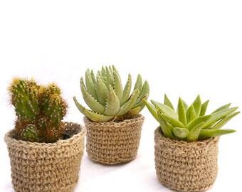 Le Mini Cache-Pot en Jute : cadeaux aux invités, cadeau d'entreprise, décoration de mariage, mini plante grasse dans un cache-pot au crochet