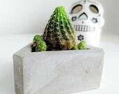 Geometric Concrete Succulent or Cacti Pot Planter, Plant Pot, Gift, Housewarming