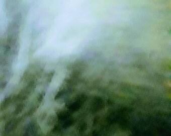 fog in the night