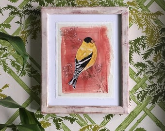 Goldfinch - Painting on paper framed