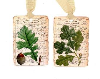 Fall Tags , Vintage Oak Leaf Tags, Acorn Tags, French Tags, Autumn Leaves, Autumn Tags, Oak Leaf, Bluebird Lane Tags, Tree Lovers, Oak Tree