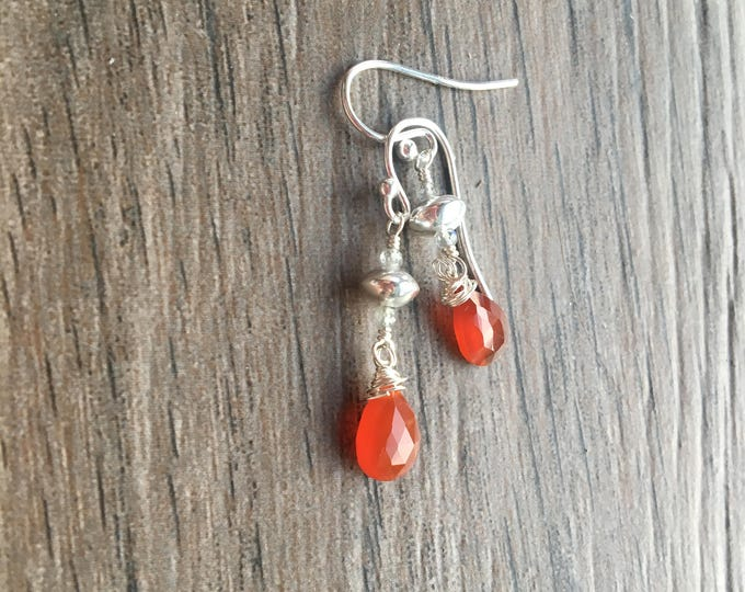 Carnelian  Labradorite and Sterling Silver Earrings Dangle