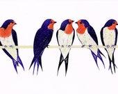 A3 Welcome Swallows Illustration Print, Swallow Art Print, Illustration From The Book Kookaburra Kookaburra