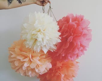 TEA PARTY tissue paper poms set of 5 paris theme wedding decorations french tea first 30th birthday party peach coral rose gold girl nursery