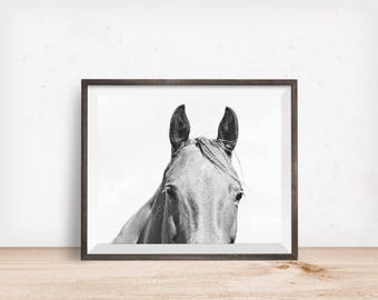 Monochromatic Photography, Light Horse Photograph, Equestrian Art, Physical Print
