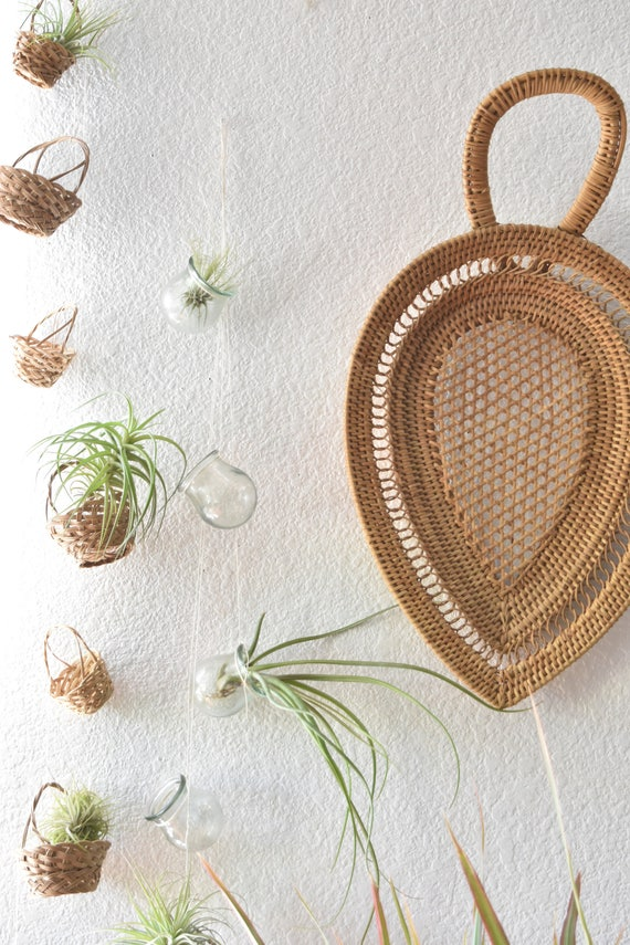 handmade wall hanging vintage lab glass garland / air plant planter