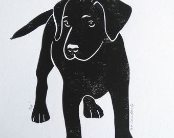 Labrador Puppy, Original Linocut Print, Open Signed Edition, Free Postage in UK, Hand Pulled, Printmaking,