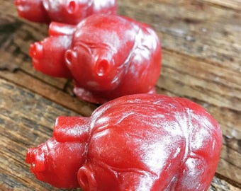 heart soaps - Valentine's Day Soap - you have my heart soaps - anatomical heart - couple soaps - vanilla cinnamon