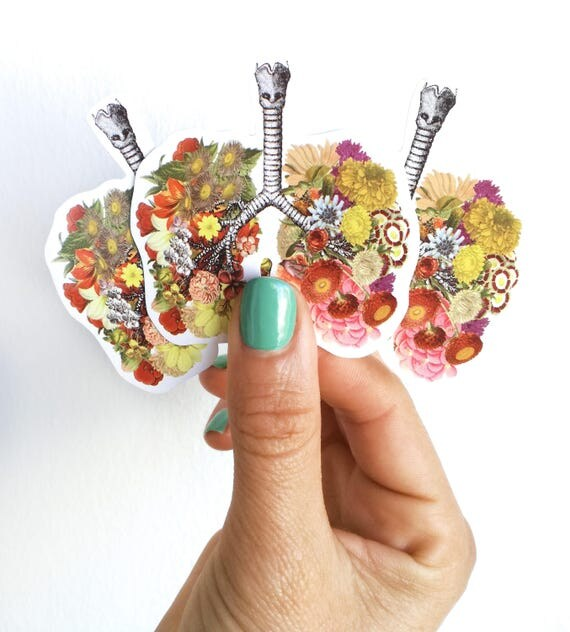Lungs with flowers, Human Lungs with flowers stickers, laptop stickers,Decal stickers, Medical student gift, BFF gift, Girls gift STC008