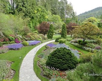 Beautiful Butchart Garden Photography, Botanical Photography, Garden Photography, Flower Photography, Wall Print