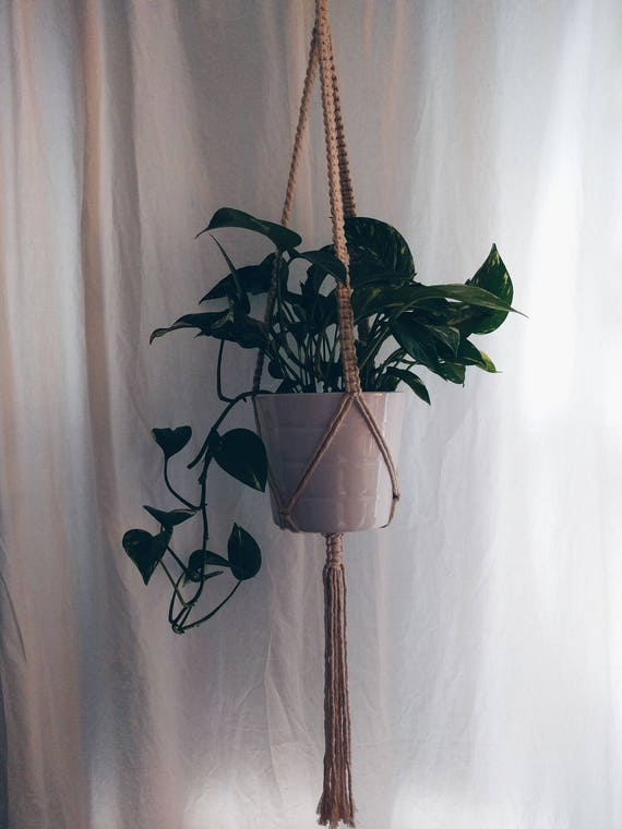 Single Plant Hanger