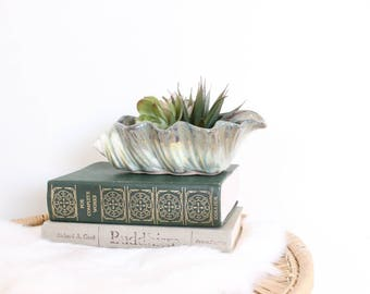 Planter Pot Seashell Planter Small Pot Succulent Pot Airplant Holder Boho Home Decor Blue Green