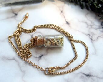 Real Flower Glass Bottle / Vial Magick Forest Curiosity & Oddity Necklace