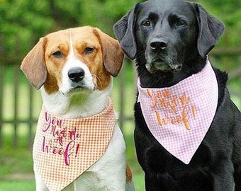 You Had Me At Woof! Pale Pink Gingham Bandana    Reversible Dog Bones Southern Classic Tie Pet Scarf    Puppy Gift by Three Spoiled Dogs