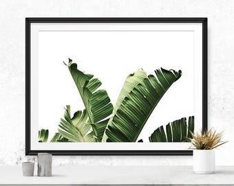 Tropical printable art, Tropical leaves, Banana leaf art, Tropical decor, Tropical wall art, Palm digital print, Palm leaf print