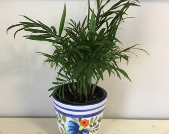 Ceramic flower Planter