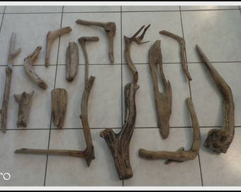 Very nice set of driftwood branches. (NO.10)